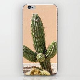 Pastel Cactus II iPhone Skin