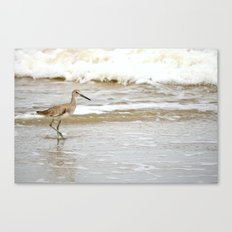 Counting the Waves Canvas Print