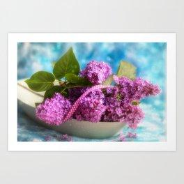 Syringa vulgaris #lilac still life Art Print