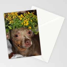 Minpin Stationery Cards