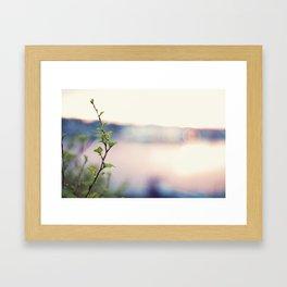Colourful Framed Art Print