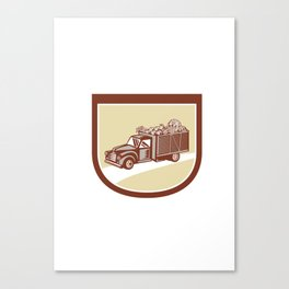 Vintage Pickup Truck Delivery Harvest Shield Retro Canvas Print