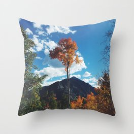 Fall Change Throw Pillow