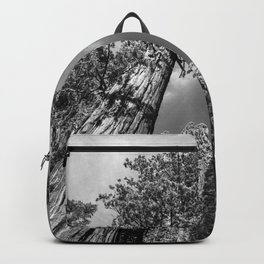 Giant Sequoia Trees in black and white Backpack