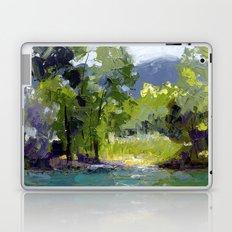 Summer Lake Laptop & iPad Skin