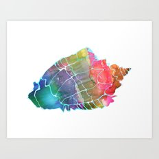 Seashell #2 Art Print