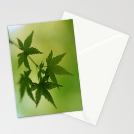 Maple Stationery Cards