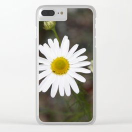 One Daisy Clear iPhone Case