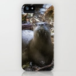 Sensed But Not Seen iPhone Case