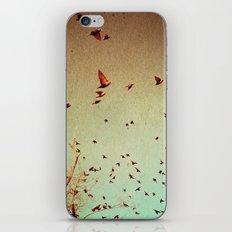 The Birds iPhone Skin