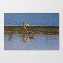 Strolling in Ding Canvas Print