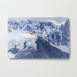 Austral Patagonian Bird Flying Metal Print