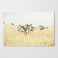 leader::kenya Canvas Print