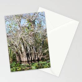 Florida Tree marshes Stationery Cards