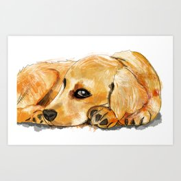 Super cute golden retriever puppy portrait Art Print