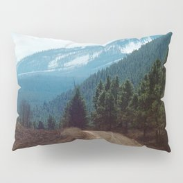 they're coming down Pillow Sham