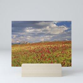 Spring poppies. Wonderful fields. Sierra Arana Mini Art Print