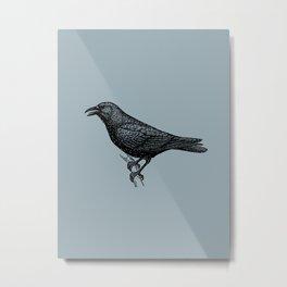 Crow (Blue Surf background colour) Metal Print