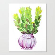 Succulent Vase Canvas Print