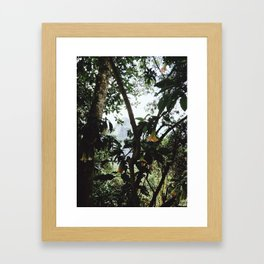 Jungle of Machu Picchu Framed Art Print