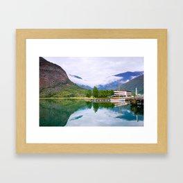 Laerdal Framed Art Print