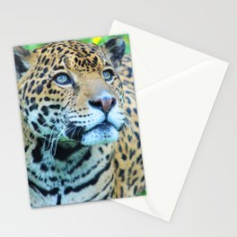 Alert Stationery Cards