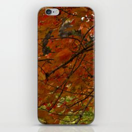 Red Maple 2017 iPhone Skin