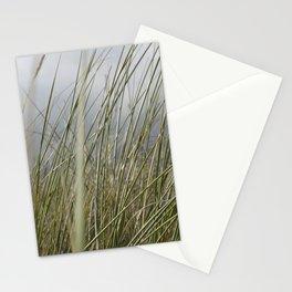Herbe à côté de la plage Stationery Cards