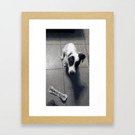 My dog Marley! Framed Art Print