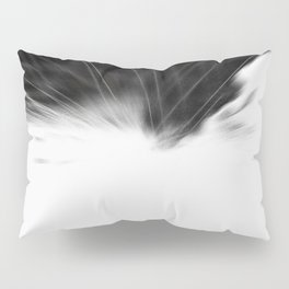 S170605BW Pillow Sham