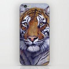 Tiger  CC118 bis iPhone & iPod Skin