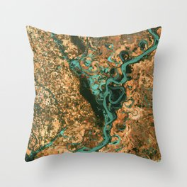 Views of life from space Throw Pillow