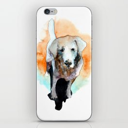 dog#20 iPhone Skin