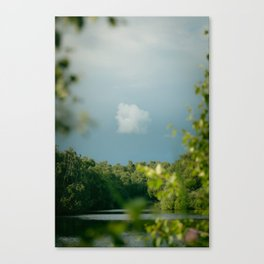 Stormy Skies over Holme Fen Canvas Print