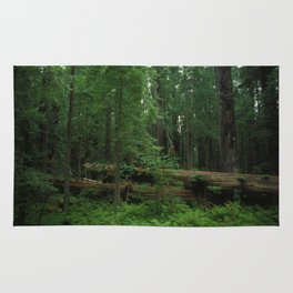 Fallen Tree in The Dense Forest Rug