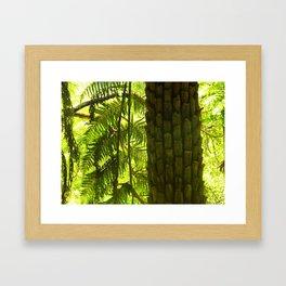 Fern Tree Framed Art Print
