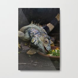 Lunchtime. Metal Print