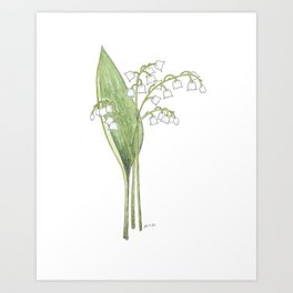 Lily of the Valley Watercolor Art Print