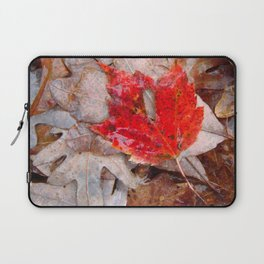 autumnal reverie 657 Laptop Sleeve