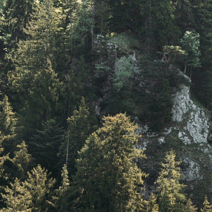 Mountain Lights - Landscape Photography Leggings