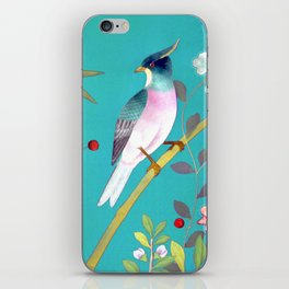 chinois 1731: turquoise  iPhone Skin