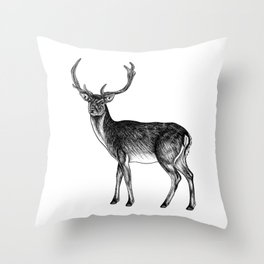 Fallow deer stag - ink illustration Throw Pillow