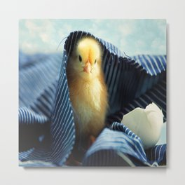 #Sweet #Chick #under the #blue #towel Metal Print