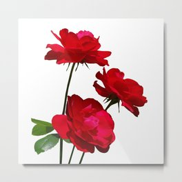 Roses are red, really red! Metal Print