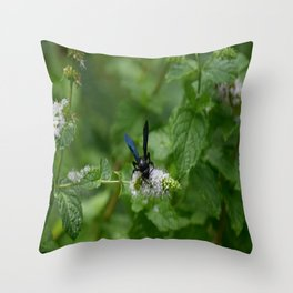 Scolia dubia a.k.a The Blue Winged Wasp Throw Pillow