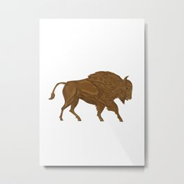North American Bison Buffalo Charging Retro Metal Print