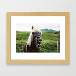 Iceland - Cheer up horse (Leica M3 & Kodak film) Framed Art Print