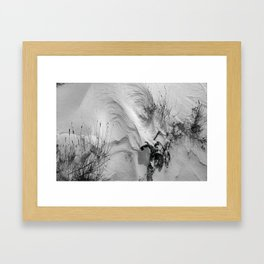 Wind Carves Graceful Curves in a Snowy Joshua Tree Framed Art Print