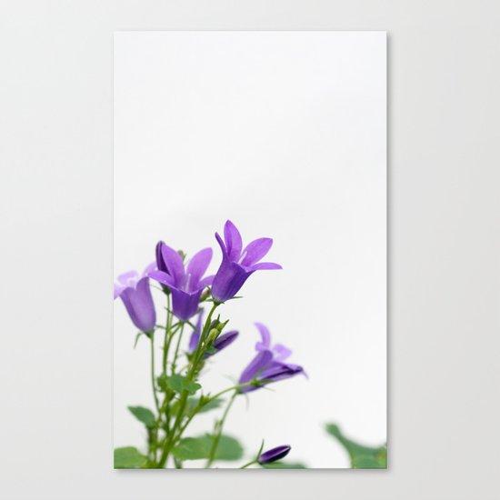 PURPLE FLOWERS - Bellflowers #1 #decor #art #society6 Canvas Print