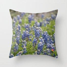 Texas Bluebonnets 12 Throw Pillow